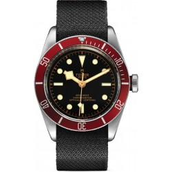 Replica Tudor Black Bay Watch M79230R-0010